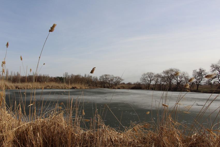 ледяной пруд