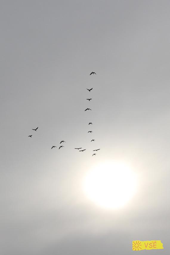 в небе
