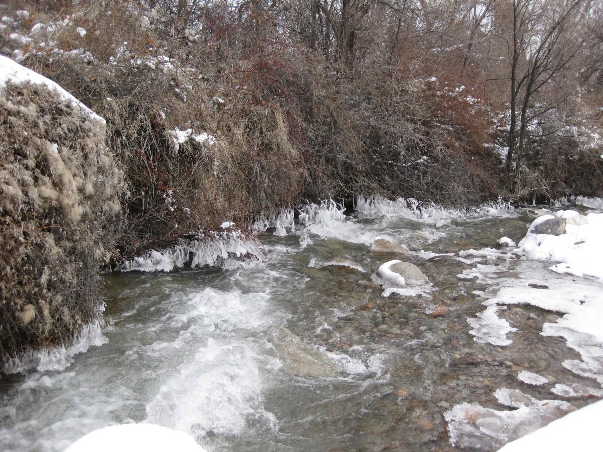 река Норус