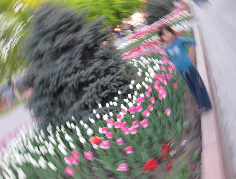 случайность при фотографировании (не фотошоп)