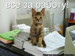 Фотография Olga_A