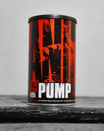 pump_1.jpg