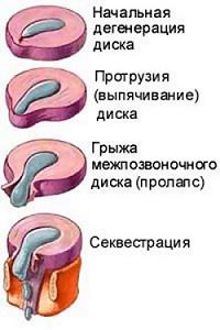 nv2fZM1nSFo.jpg
