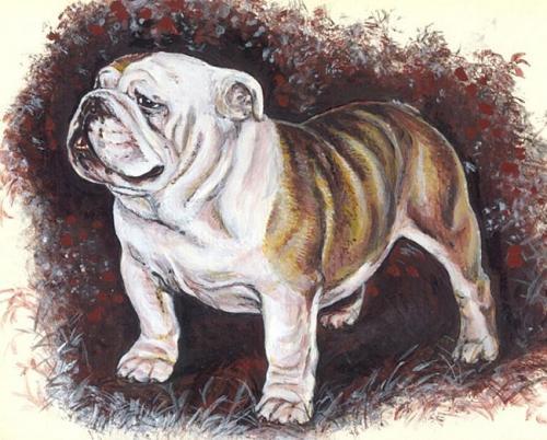 300x241 крест.  Марка нитей.  Теги: собаки. английский бульдог.  0. Автор. babushkanatasha.
