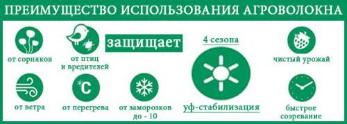 606817105_w640_h2048_3213.jpg
