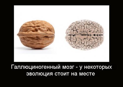 produkty_poleznye_dlya_organov_2.jpg