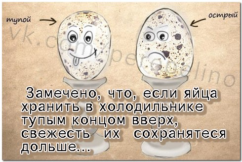 I9qOFaVC7pU.jpg