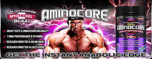 aminocore_banner.jpg
