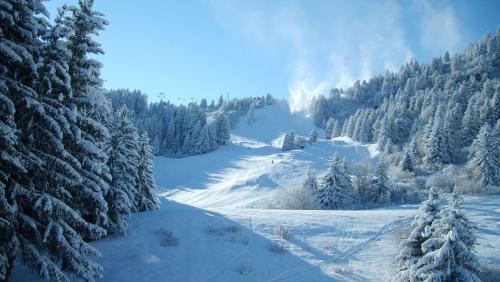 winter-wallpaper-1366x768.jpg