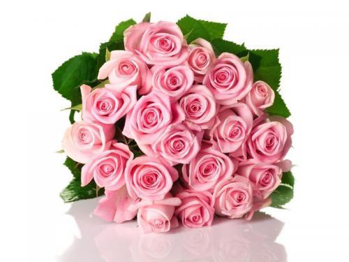 avatar_166043_20121018165610.jpg