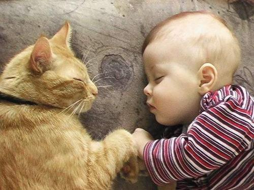 kids-with-cats-21-605.jpg