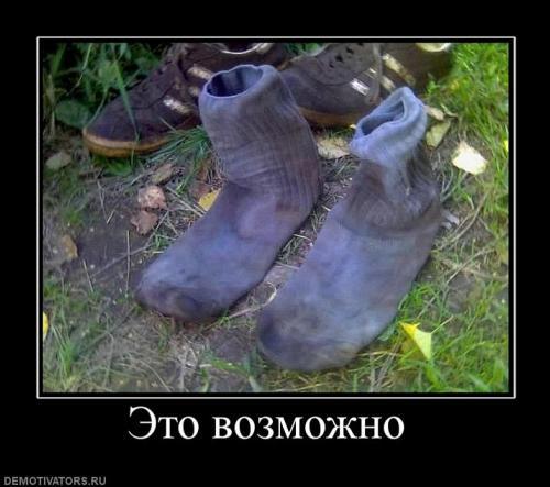 85202_eto_vozmozhno_.jpg