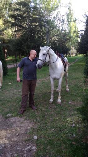 Я и лошадь.jpg