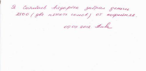 взрослая_ожоговая_09.09.2012..jpg