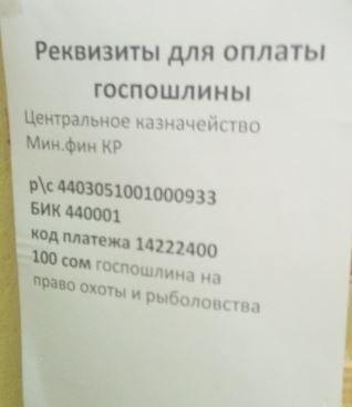 Заявление маткапитал срок перечисления денежных средств