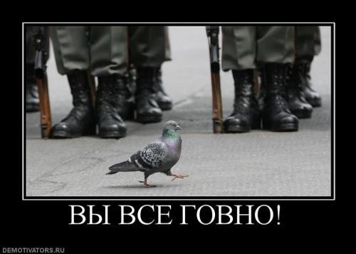 58062_vyi_vse_govno.jpg