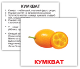 cumkvat_2.jpg