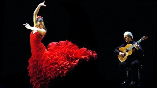 flamenco_03.jpg