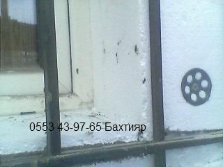 post_188175_1331448000.jpg
