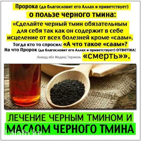 3310388_maslo_chernogo_tmina_pervyi_otzhim_iz_egipta_meditsina_proroka_17194.jpg