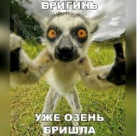 ТребуетсяСварщик!!!!!!!!! - последнее сообщение от toliki-88