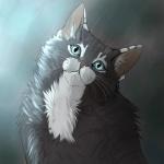 Фотография Йошкин кот
