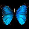 Самые ЛУЧШИЕ ландшафтные проекты!!!. Создайте сад своей Мечты - последнее сообщение от mariposa