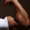 Йохимбин для мужской силы и здоровья - последнее сообщение от Muscle